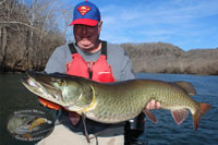 New River Musky